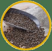 Consulter les farines de blé noir