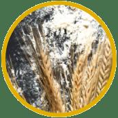 Consulter les farines de blé froment
